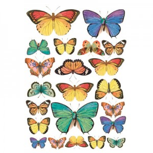 Foglio di carta di riso A4 butterfly collection